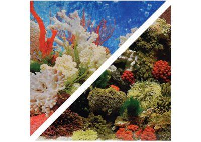 artículos para mascota peces respaldo para acuarios c030450 400x284 - Decoración Acuario