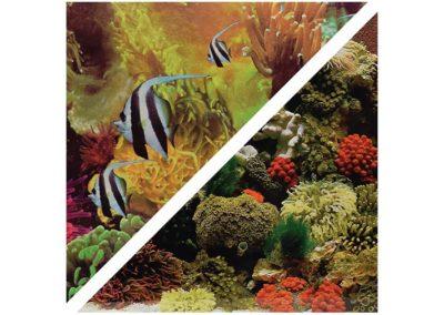 artículos para mascota peces respaldo para acuarios c050150 400x284 - Decoración Acuario
