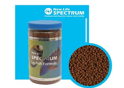 ALIMENTO SPECTRUM SP 43600