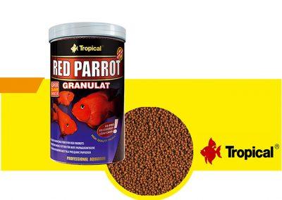 sunny articulos para mascota peces alimento TP 60716 400x284 - Alimentación peces agua dulce