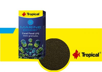 ALIMENTO TROPICAL TP 61253