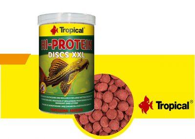 sunny articulos para mascota peces alimento TP 61364 400x284 - Alimentación peces agua dulce