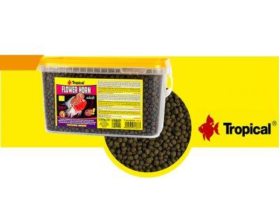 sunny articulos para mascota peces alimento TP 64387 400x284 - Alimentación peces agua dulce