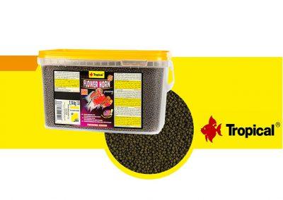 sunny articulos para mascota peces alimento TP 65387 400x284 - Alimentación peces agua dulce