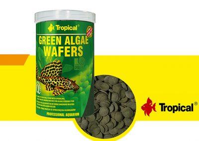 sunny articulos para mascota peces alimento TP 66424 400x284 - Alimentación peces agua dulce