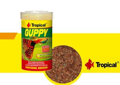sunny articulos para mascota peces alimento TP 77053 400x284 - Alimentación peces agua dulce