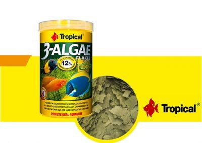 sunny articulos para mascota peces alimento TP 77164 400x284 - Alimentación peces agua dulce