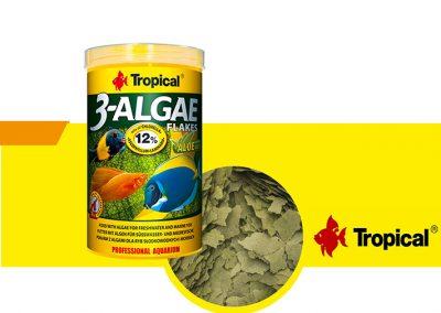sunny articulos para mascota peces alimento TP 77166 400x284 - Alimentación peces agua dulce
