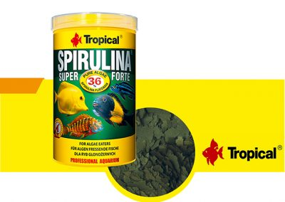 sunny articulos para mascota peces alimento TP 77236 400x284 - Alimentación peces agua dulce