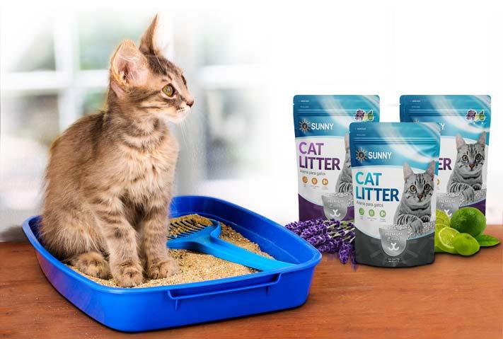 sunny articulos para mascota gato arenas lanzamiento - SUNNY | Artículos para Mascotas