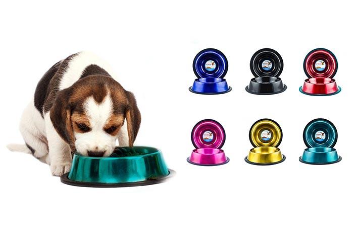 sunny articulos para mascota perro plato banners 1 - SUNNY | Artículos para Mascotas