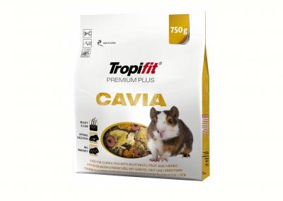 CAVIA 400x284 - Alimento Roedores