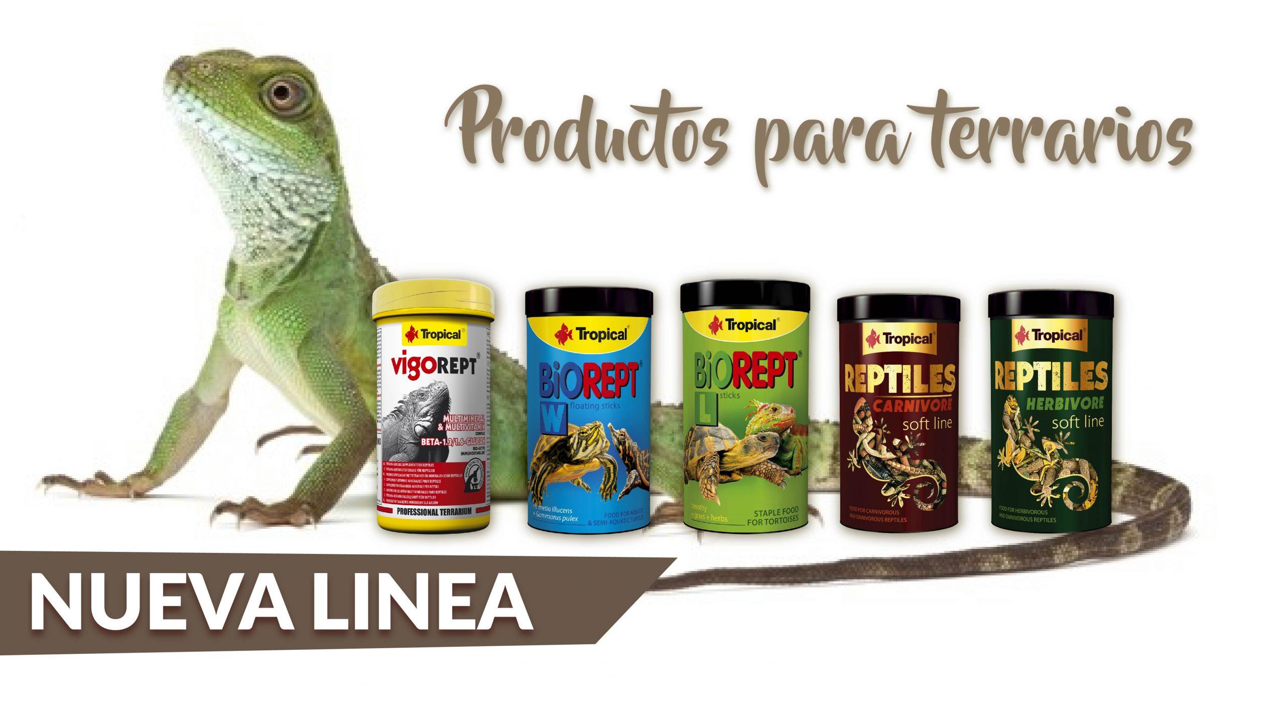 reptiles web 14 scaled - SUNNY | Artículos para Mascotas